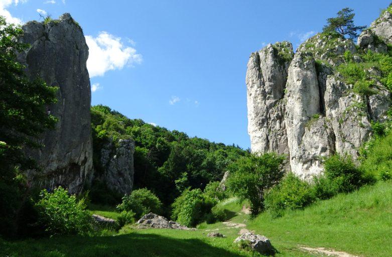 Dolina Bolechowicka, Brama Bolechowicka, miejsce, w którym odbywają się kursy wspinaczkowe