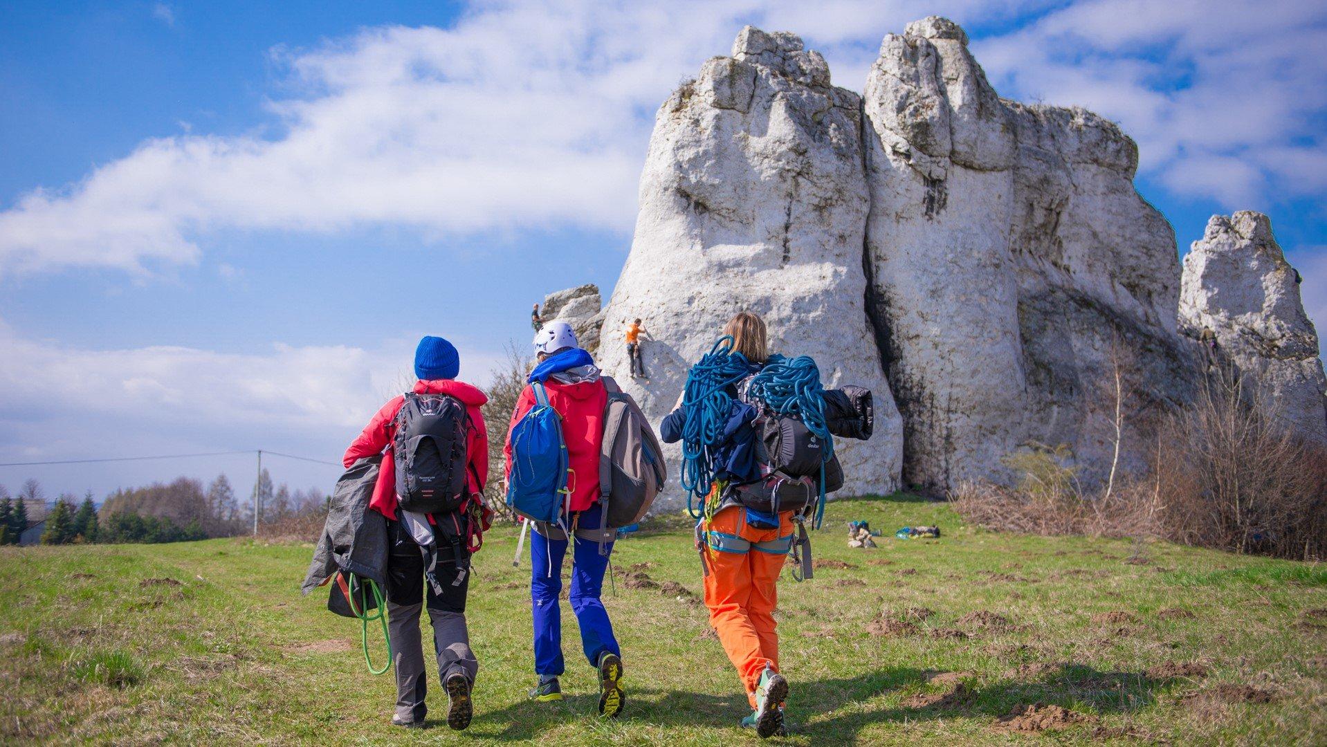 Podstawowy kurs wspinaczki skalnej - Ostańce Jerzmanowickie